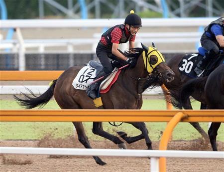 【競馬予想】サマースプリントシリーズ 第32回 産経賞セントウルステークス(GII)