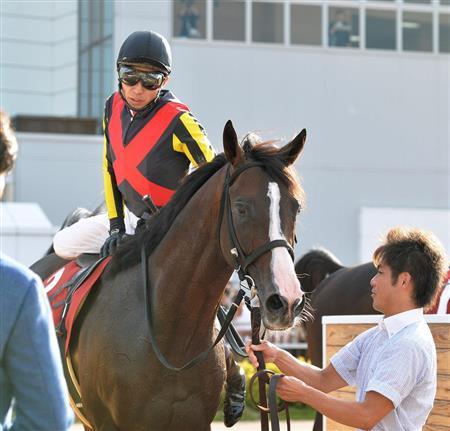【競馬】3着 ダンビュライト武豊「ゲートの中でうるさかったです。ルーラーシップの血が出てきたのかも」