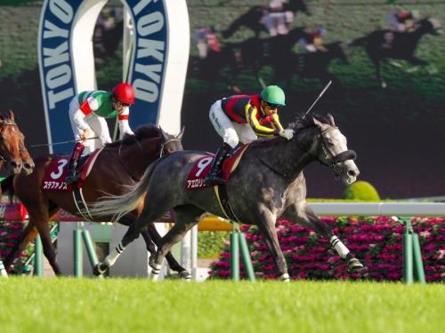 【競馬レース回顧】毎日王冠反省会