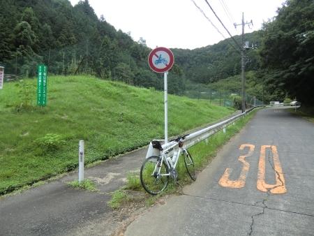 MG7694.jpg