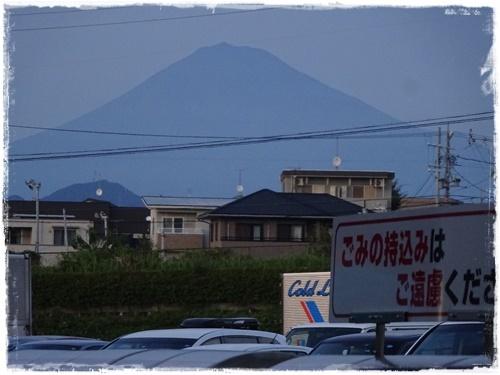 DSC02208h.jpg