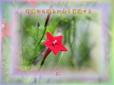 『 邪悪なる地上に赤き星満てよ 』筑紫風575交心zrq1508