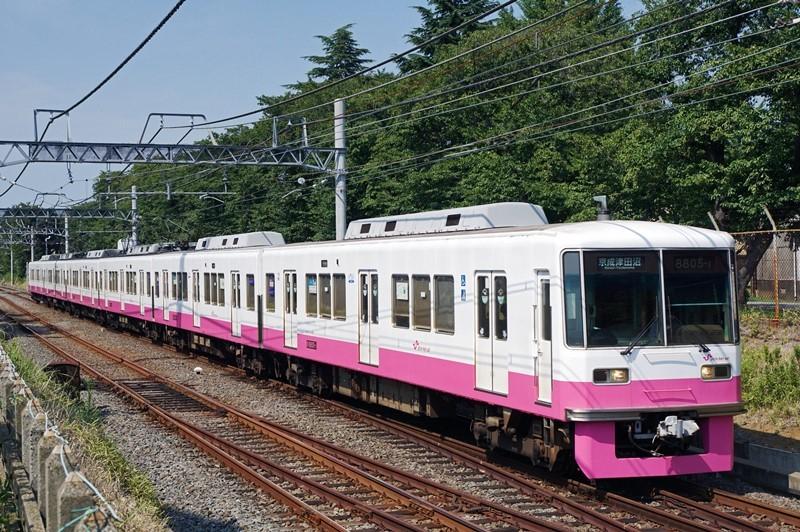 2018年8月3日 元山~くぬぎ山にて (4)