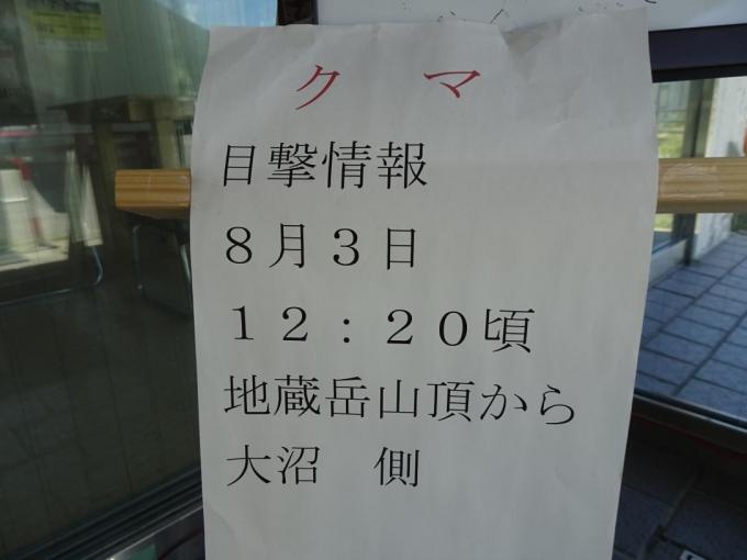 クマ目撃情報2