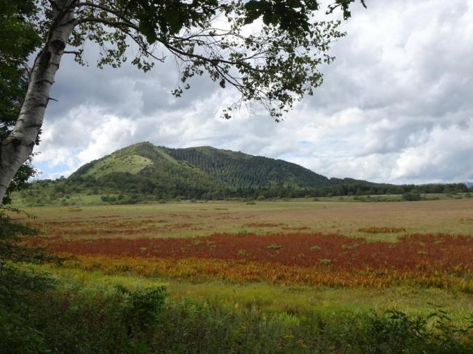 秋色の湿原と鷲ヶ峰