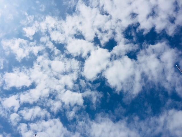 sky_9月