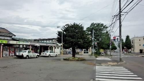 苗穂駅前 オンコの木