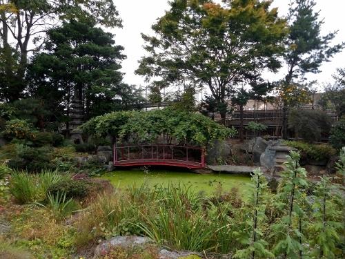 西岡5条 Yoさん宅の庭園