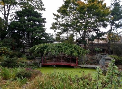 西岡5条 Yoさん宅庭園 2018年9月
