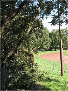 台風の公園2