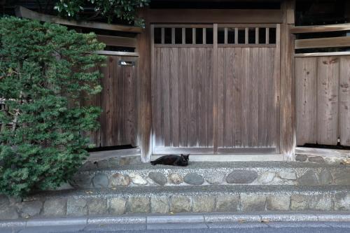 門前のクロちゃん