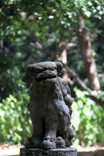天神垣神社の狛わんこ