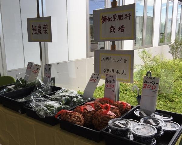 私の野菜たち