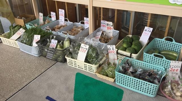 他の方が展示した野菜たち