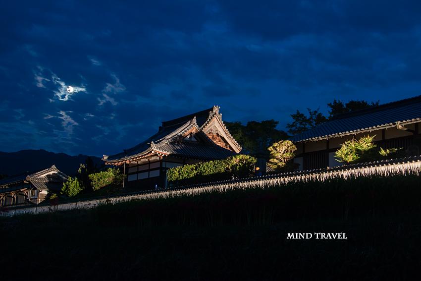 橘寺 ライトアップ 月