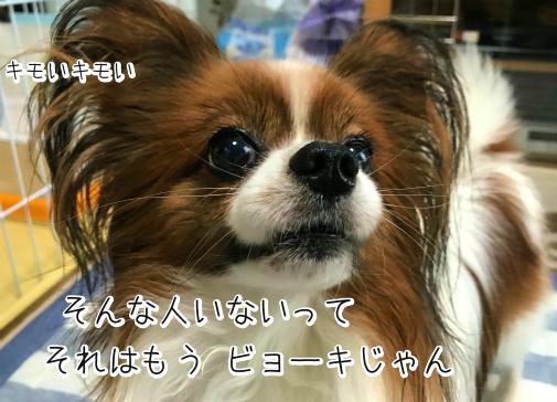 cnnrya_k20180914-5.png