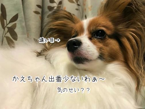 idU0YCec20180813-8.png