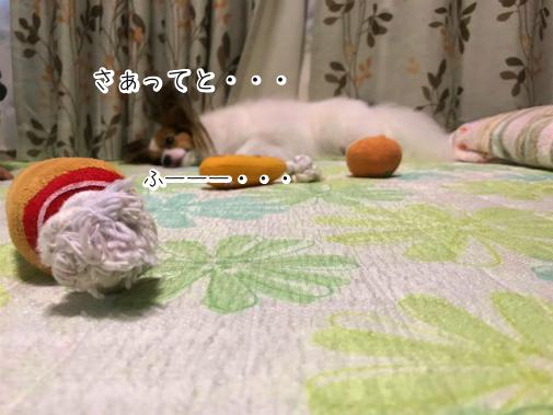 s_2NXDmn20180814-5.png