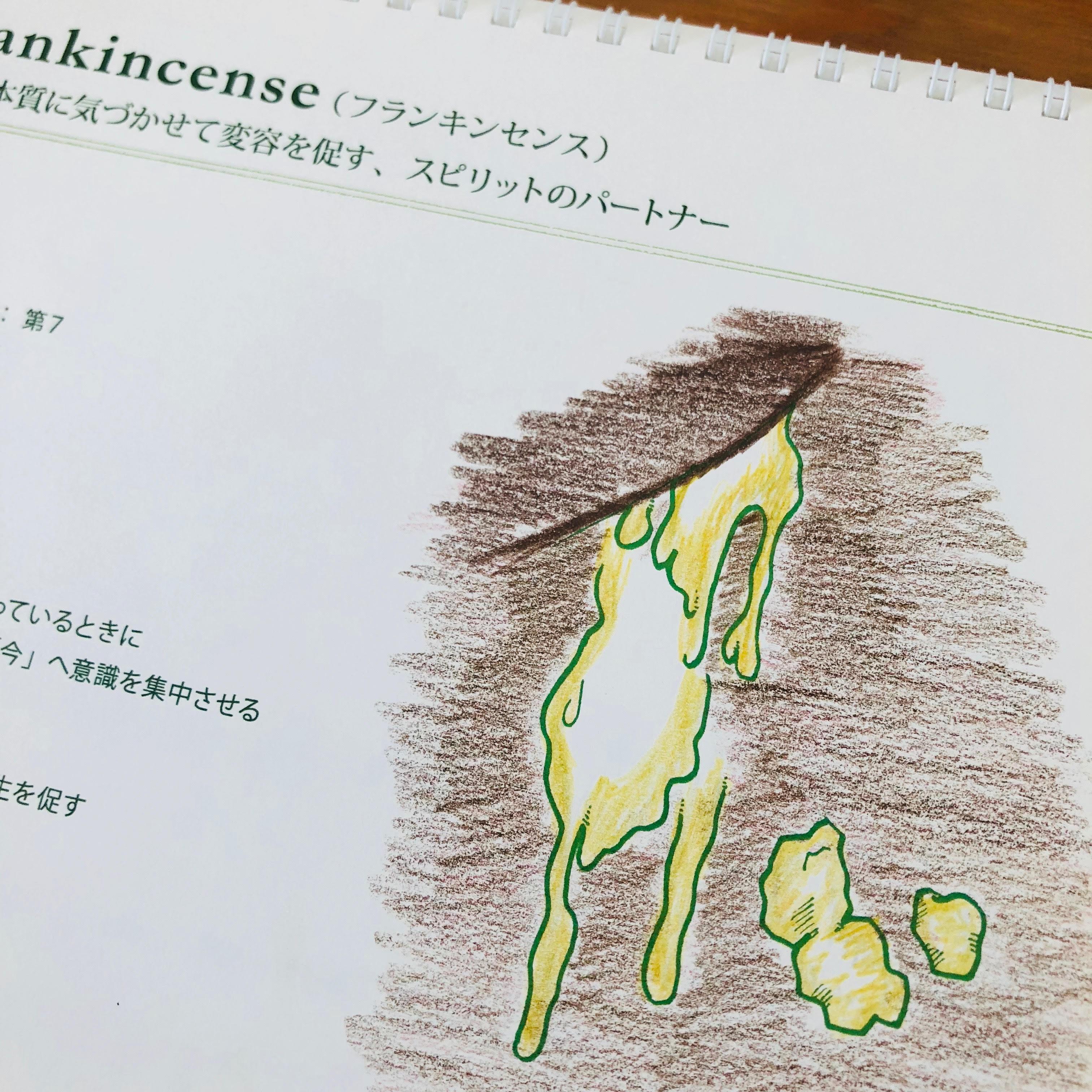 ワークブック1