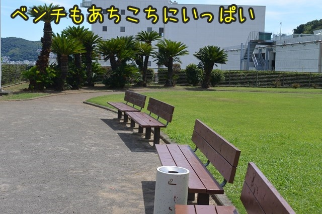 a-DSC_0006.jpg