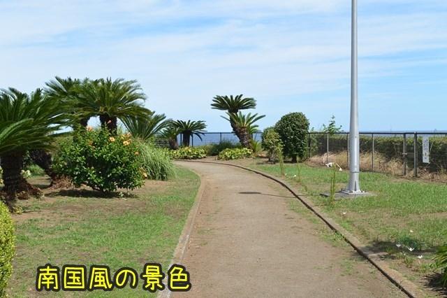 a-DSC_0016.jpg