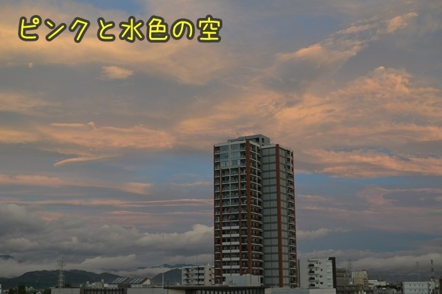 a-DSC_0070.jpg