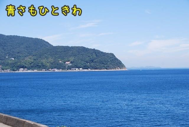 a-DSC_6927.jpg
