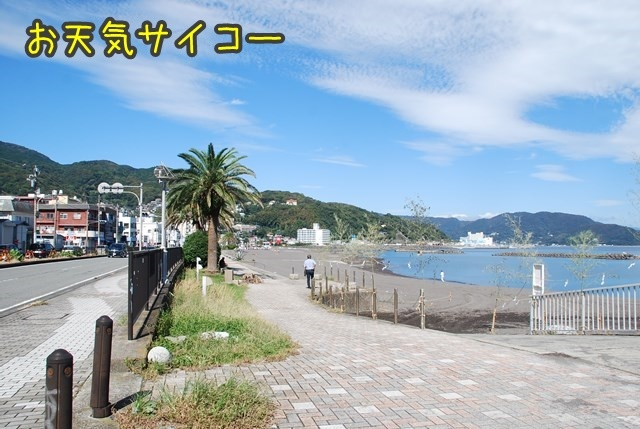 a-DSC_7252.jpg