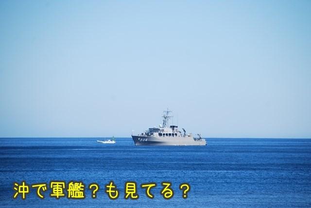 a-DSC_7282.jpg