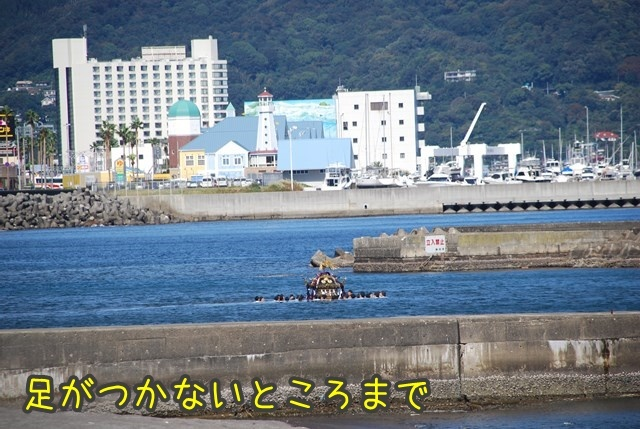 a-DSC_7284.jpg