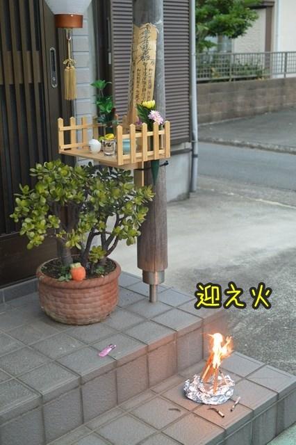 a-DSC_9980.jpg