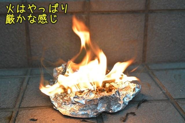 a-DSC_9989.jpg