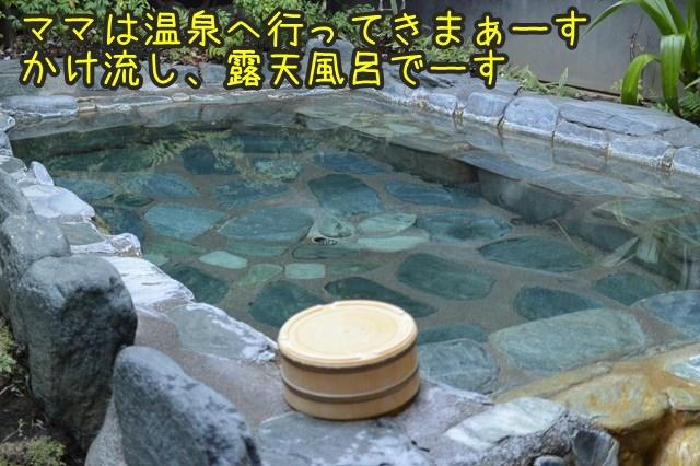 a-DSC_9992.jpg