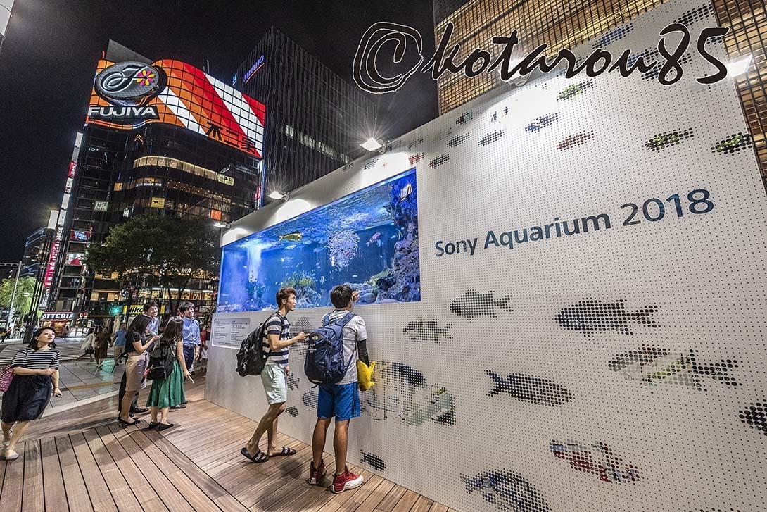 銀座ソニーパークから 20180906