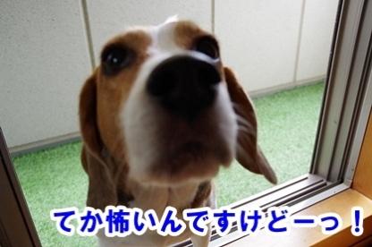 台風 000