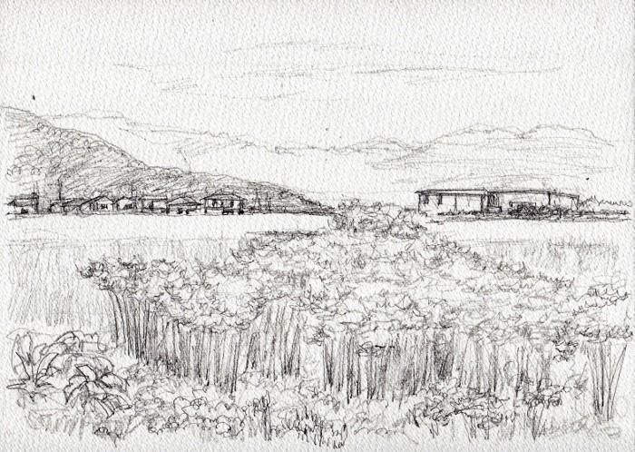 彼岸花の咲く風景 デッサン2 (700x498)