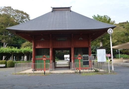 180914-153243-拝島宿20180914 (357)_R