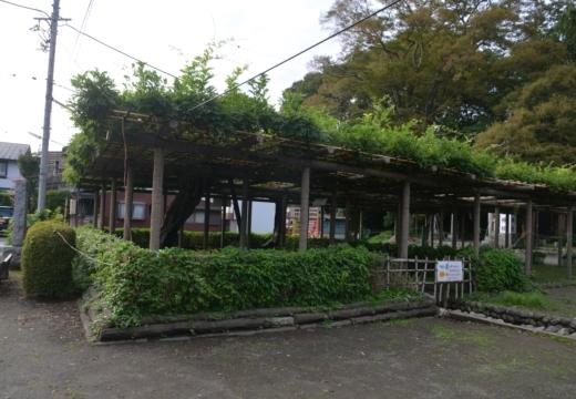 180914-152927-拝島宿20180914 (343)_R