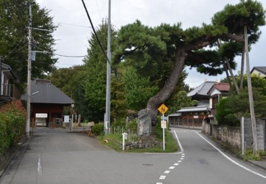 180914-160645-拝島宿20180914 (450)_R