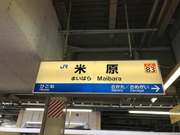 maibara_zairai.jpg