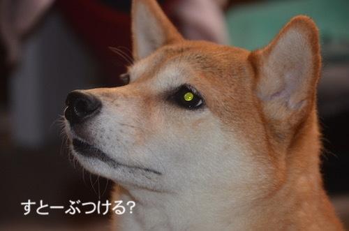 お弁当 9/26