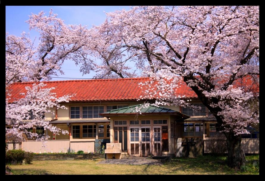 桜と下里分校