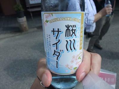mini_3314_sakuragawa_4b5aaa706b60cimage6397888.jpg