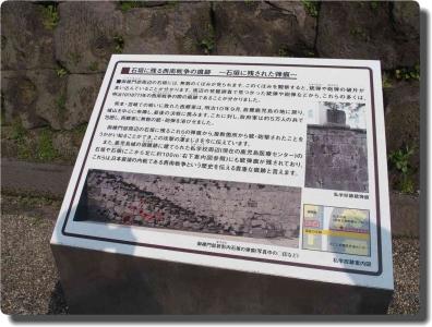mini_56_kagosimajou_P8059102.jpg