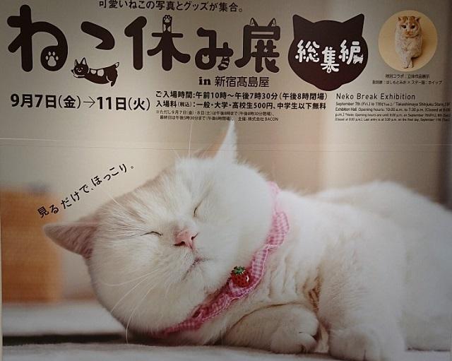 blog1619.jpg