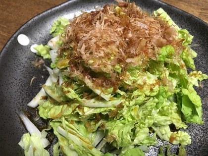 白菜とおかかのサラダ