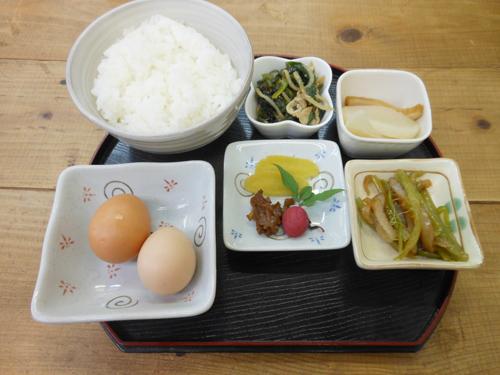 tosayama5.jpg