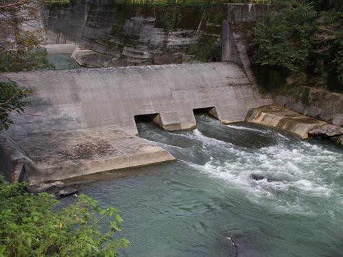 tosayama9-2.jpg
