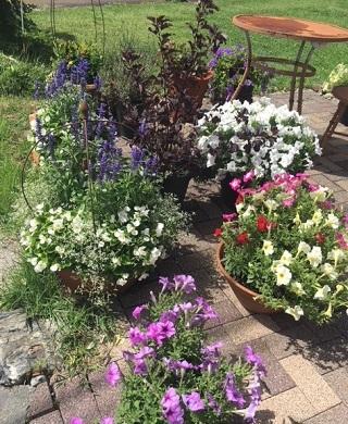 庭がきれいなカフェ