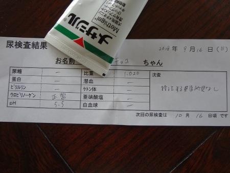 DSC05650sd.jpg